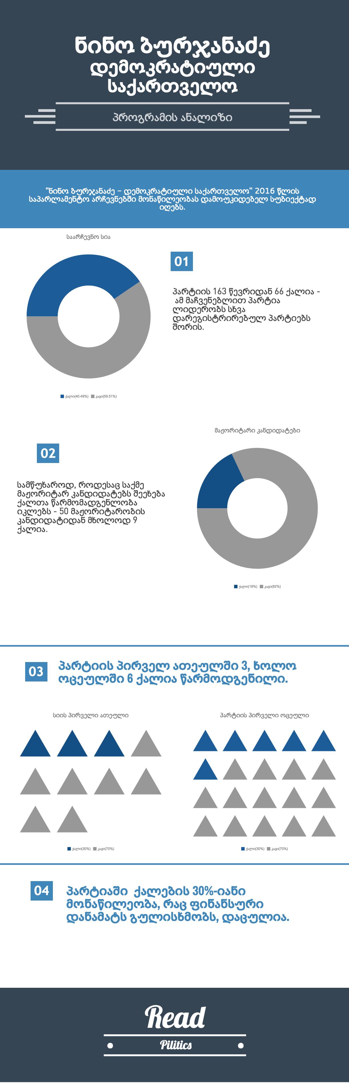 nino burjanadze democratic movement program analysis